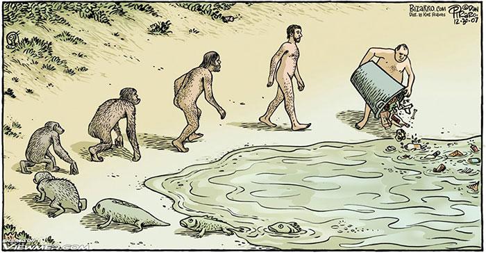 evolucia (5)