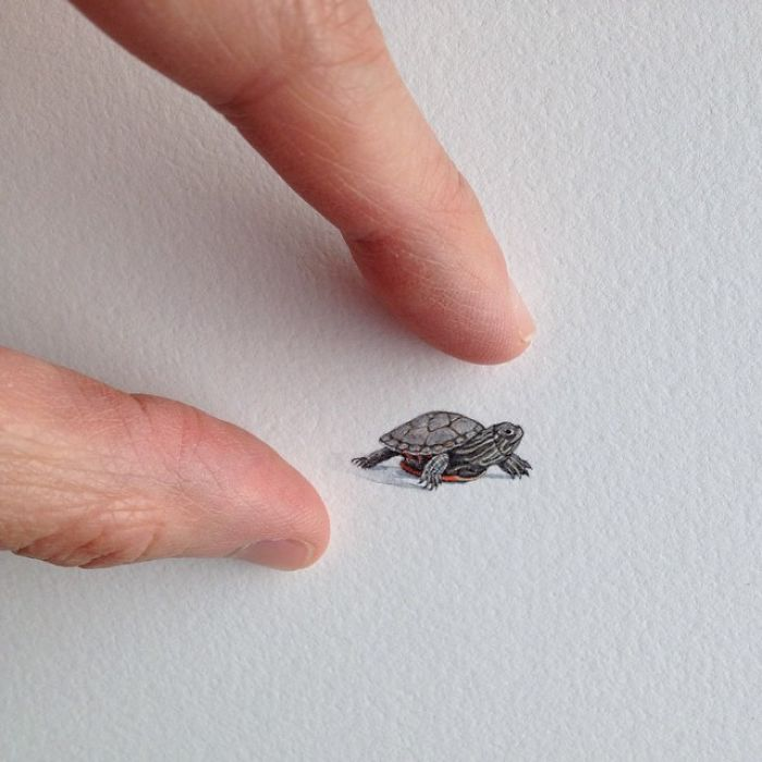 miniatúrne maľby (8)