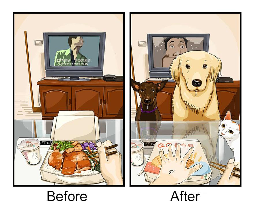 pred a po zaobstaraní psa (2)