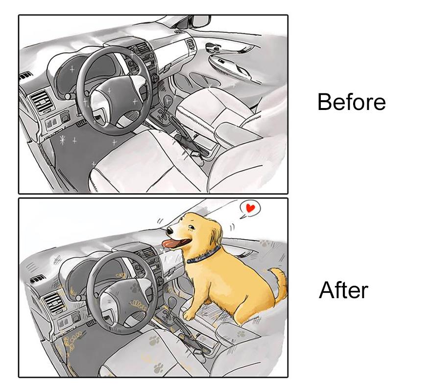pred a po zaobstaraní psa (7)