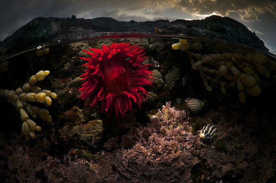 svet nad a pod morom (19)