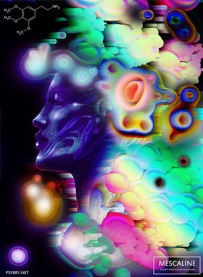 umelec pod vplyvom drog (17)