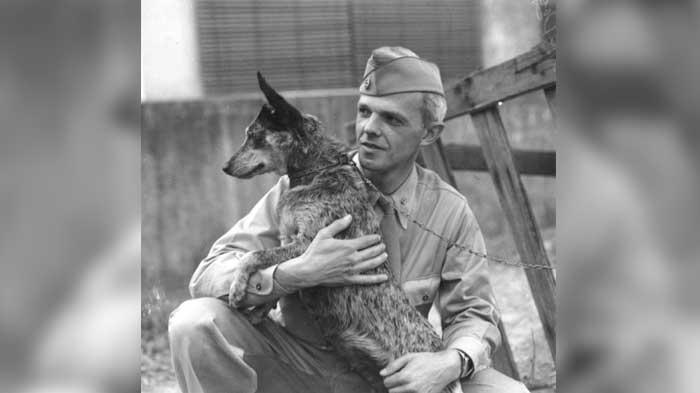 vojaci a psy (1)