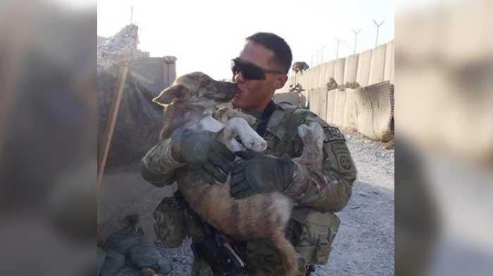 vojaci a psy (6)