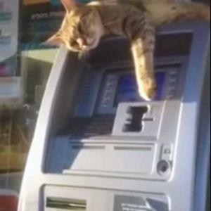vyber z bankomatu (8)