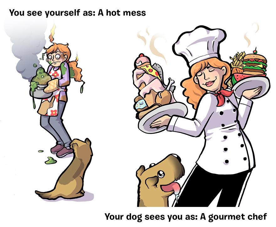 ako vás vidí pes (5)
