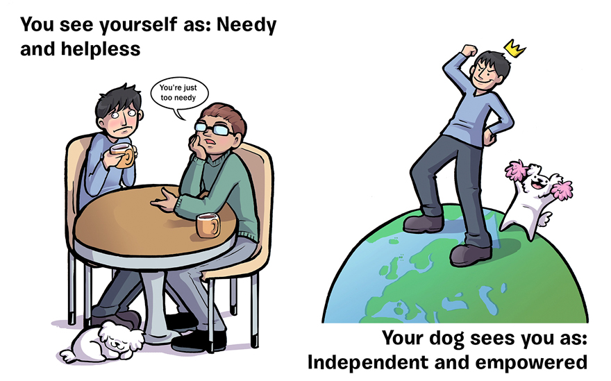 ako ta vidi pes (6)