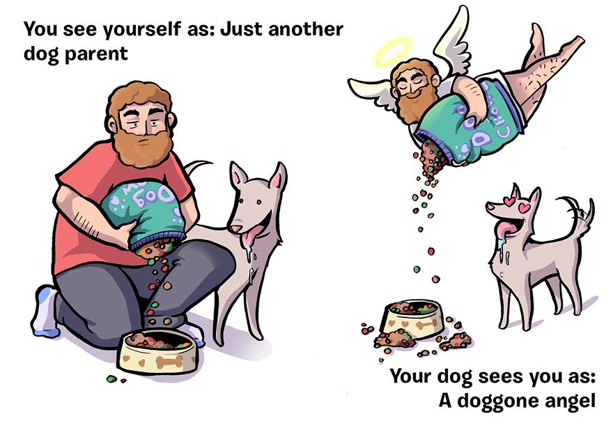 ako vás vidí pes (9)
