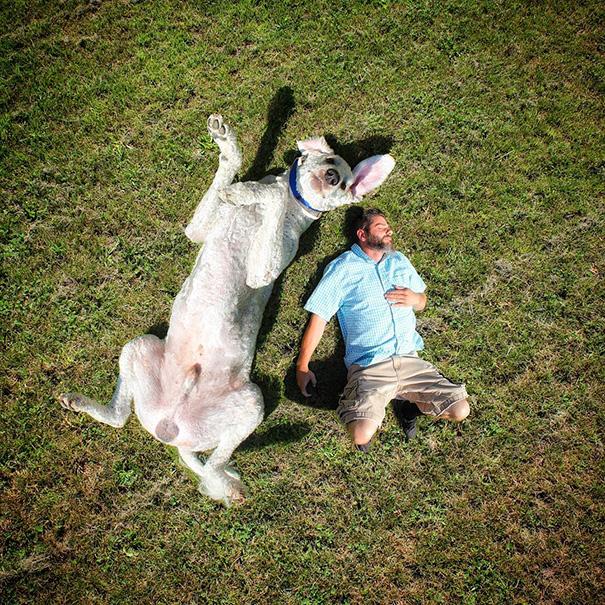 velky pes (13)