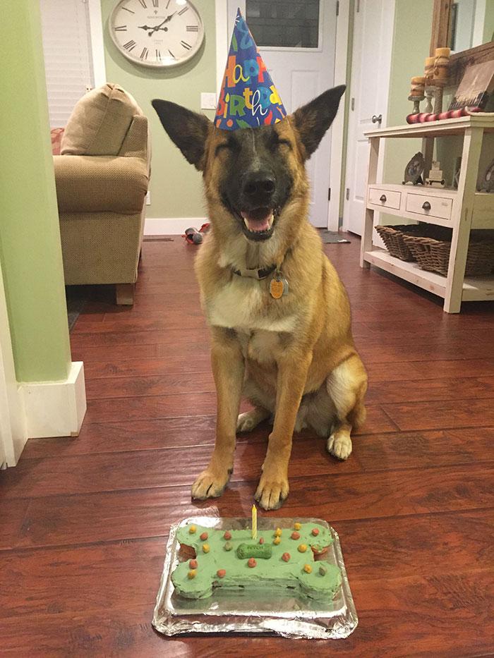zvieratka maju narodeniny (5)