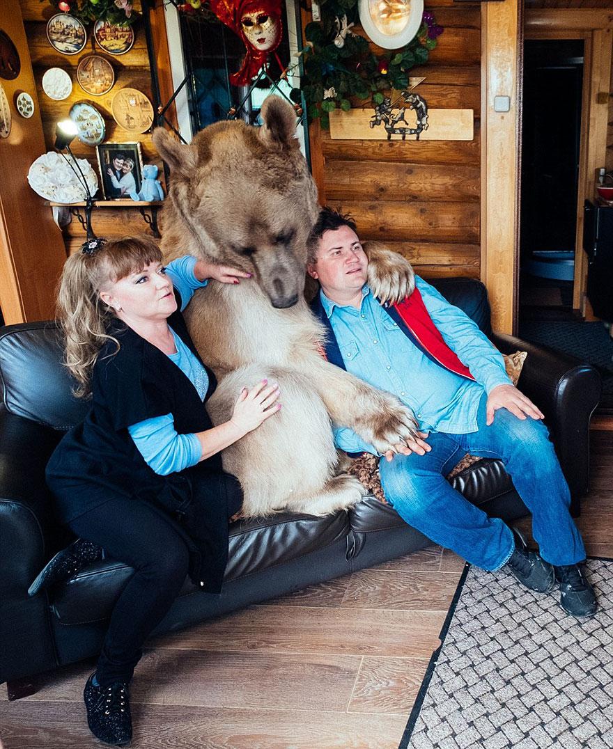 adoptovany medved (6)