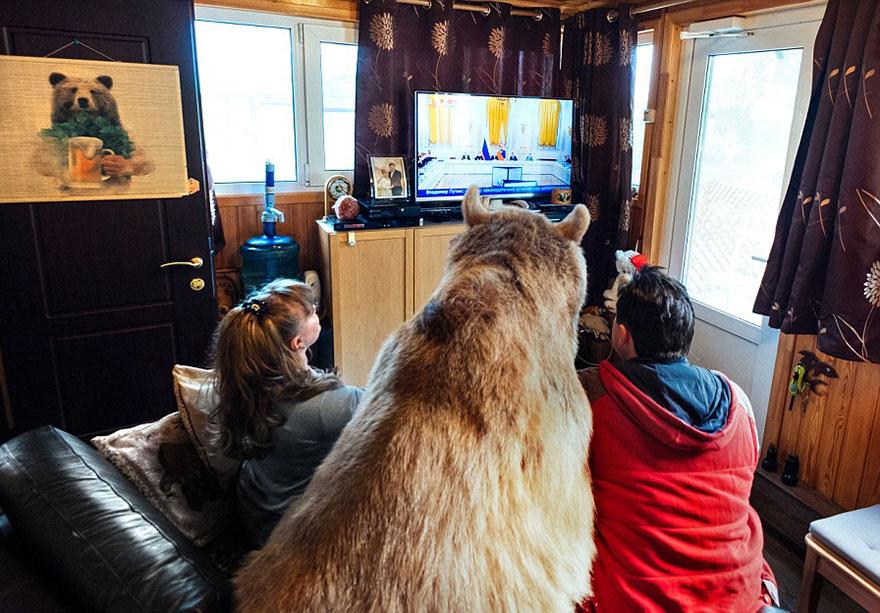 adoptovany medved (7)