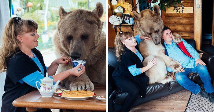 adoptovany medved (9)
