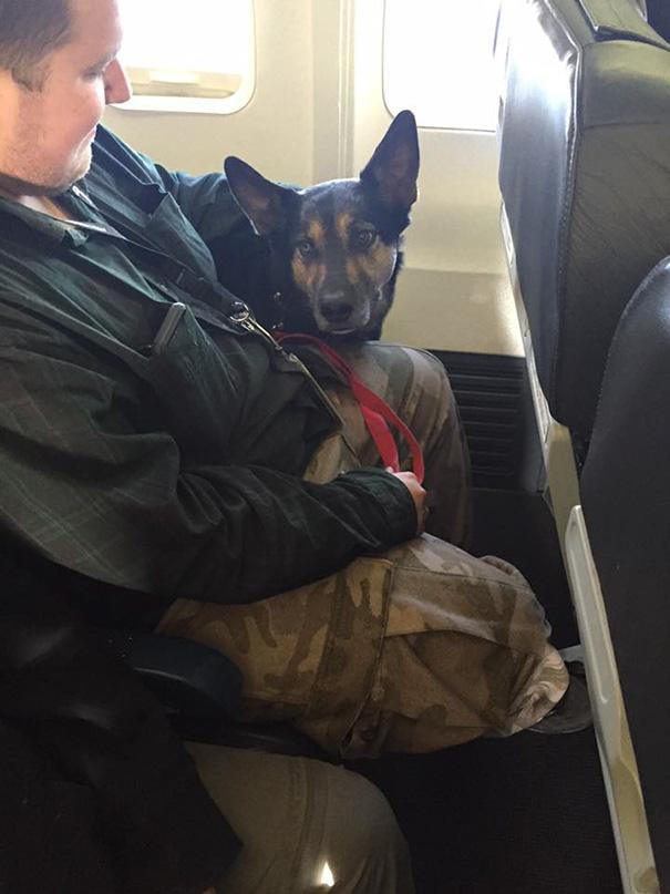 mazlickovia na lietadle (7)
