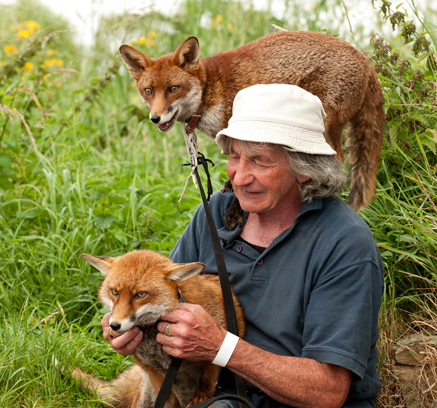 muž a líšky (3)