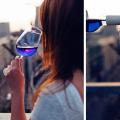 modre vino (7)