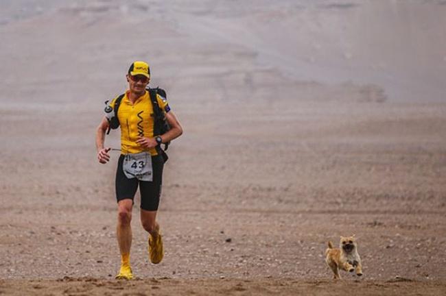 pes maratonec (2)