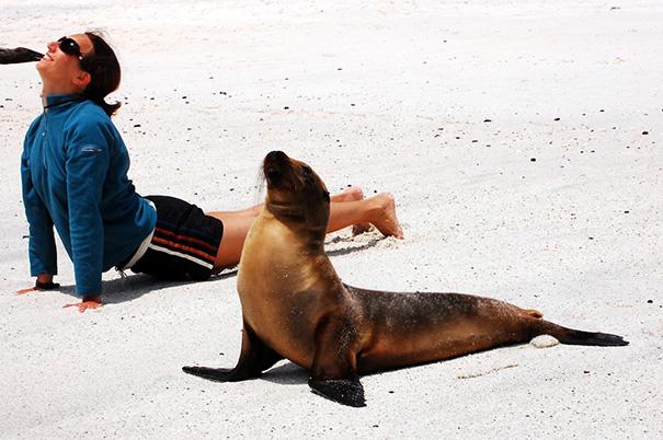zvieratka joga (6)