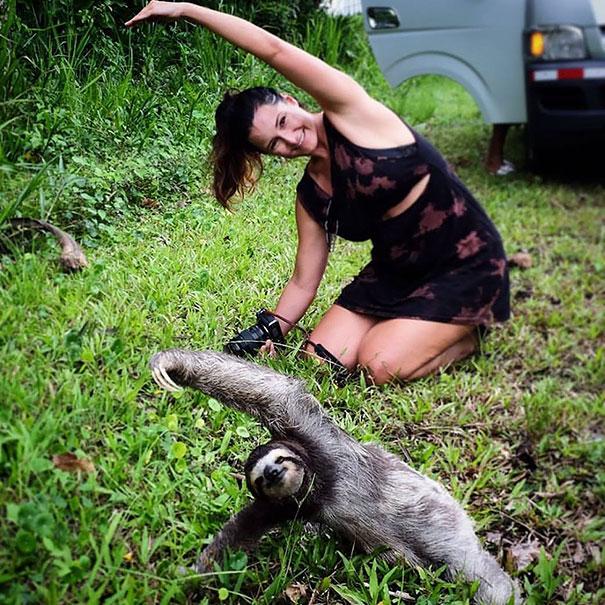 zvieratka joga (7)