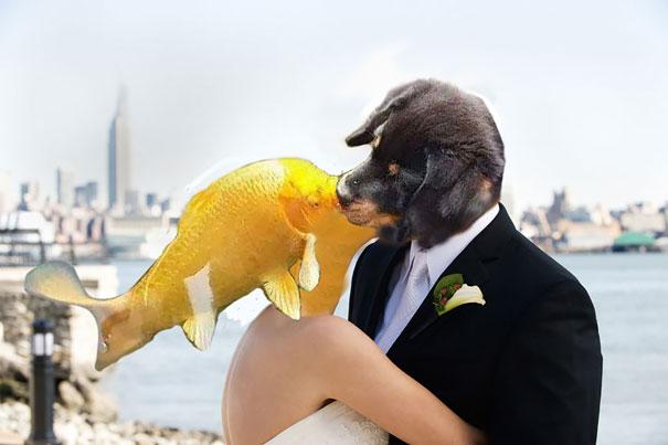 havko s rybičkou