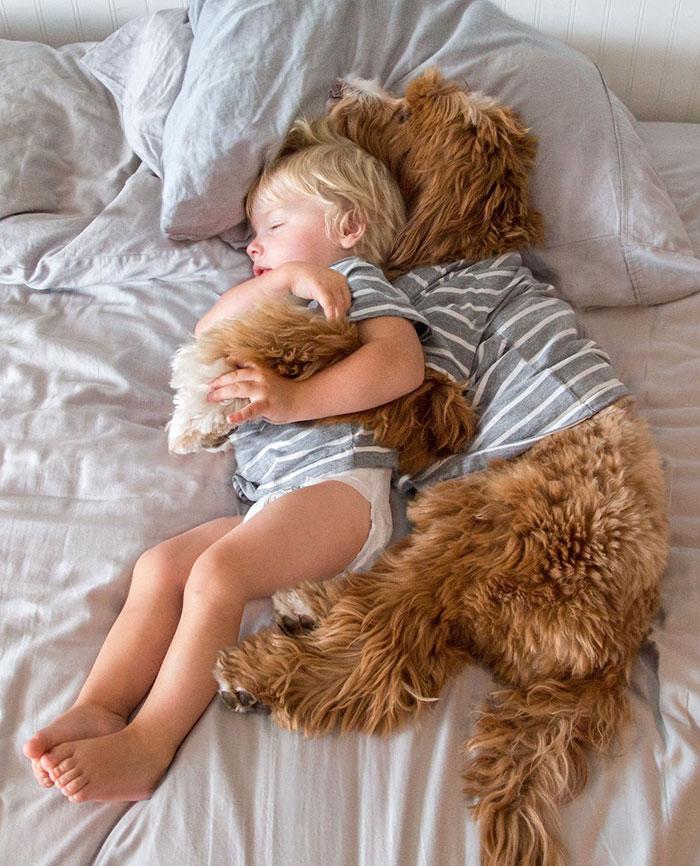 priateľstvo psa a chlapčeka