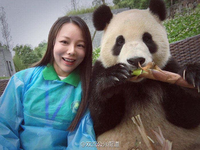 selfie panda (6)