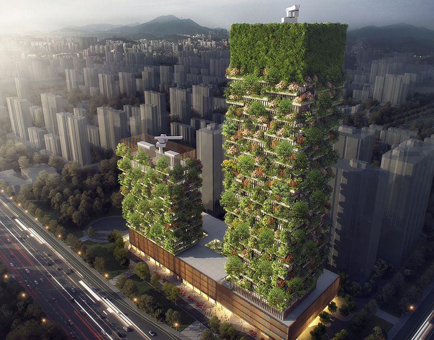 lesy budúcnosti (1)