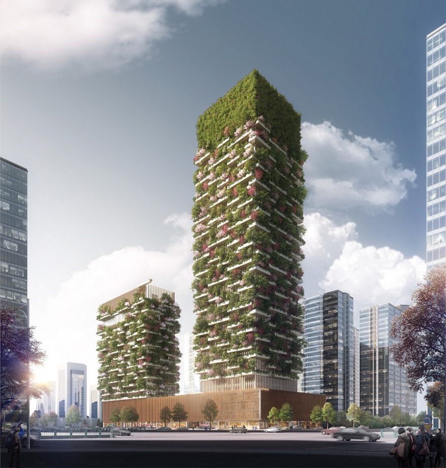 lesy budúcnosti (3)