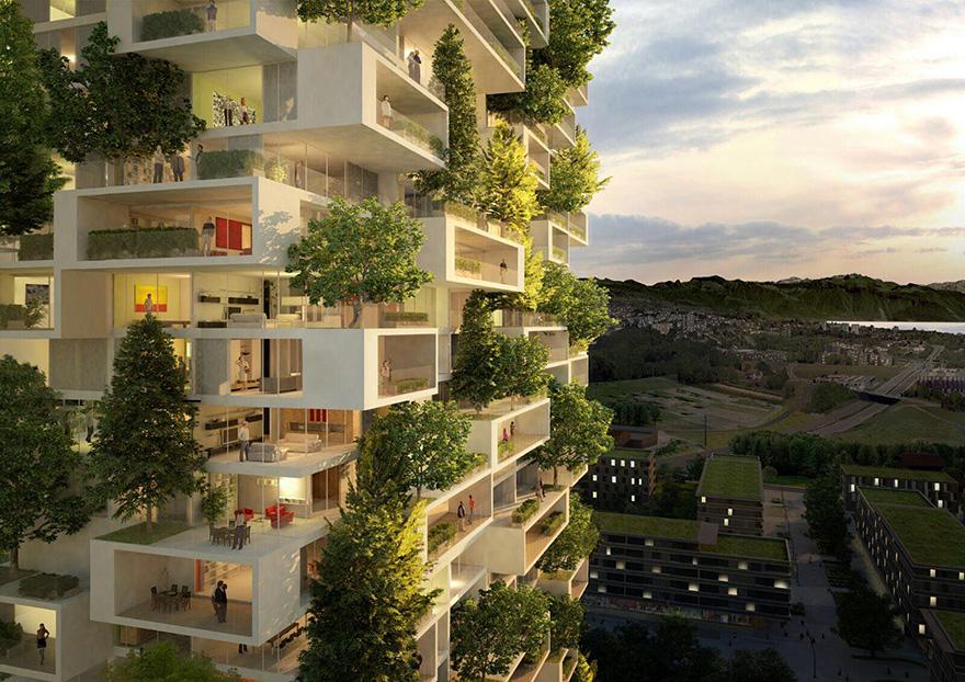 lesy budúcnosti (5)