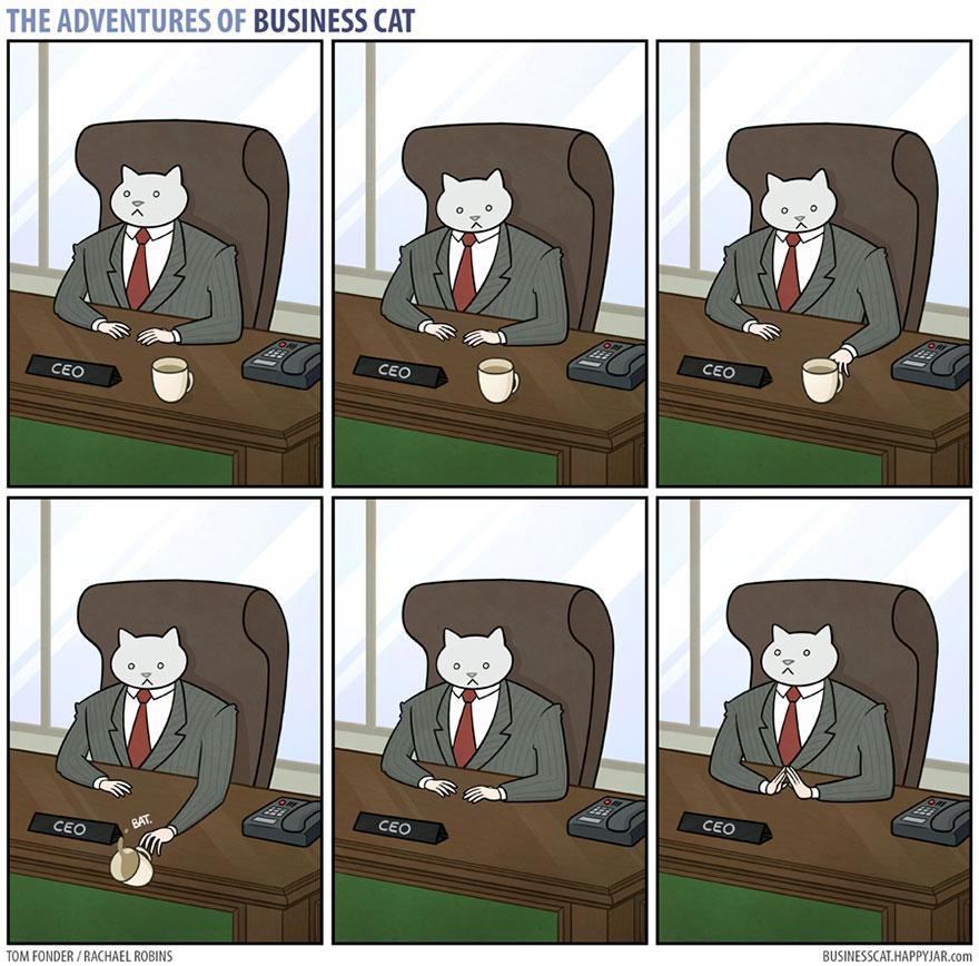 mačka šéf (3)