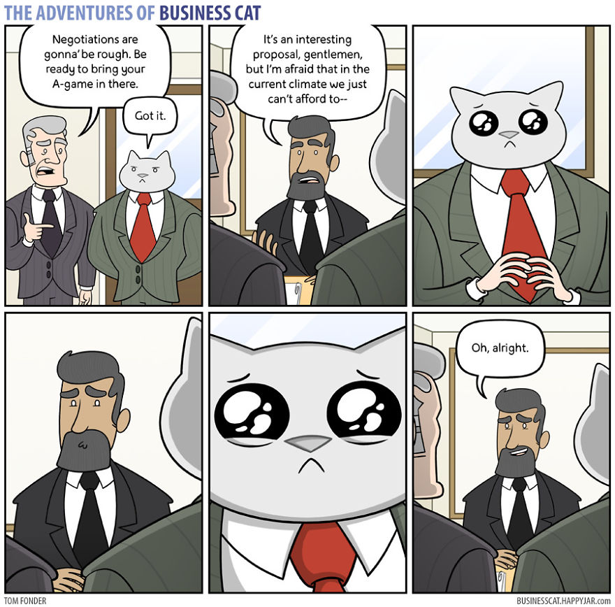 mačka šéf (6)