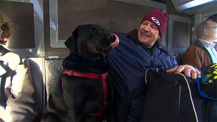 pes v autobuse (9)