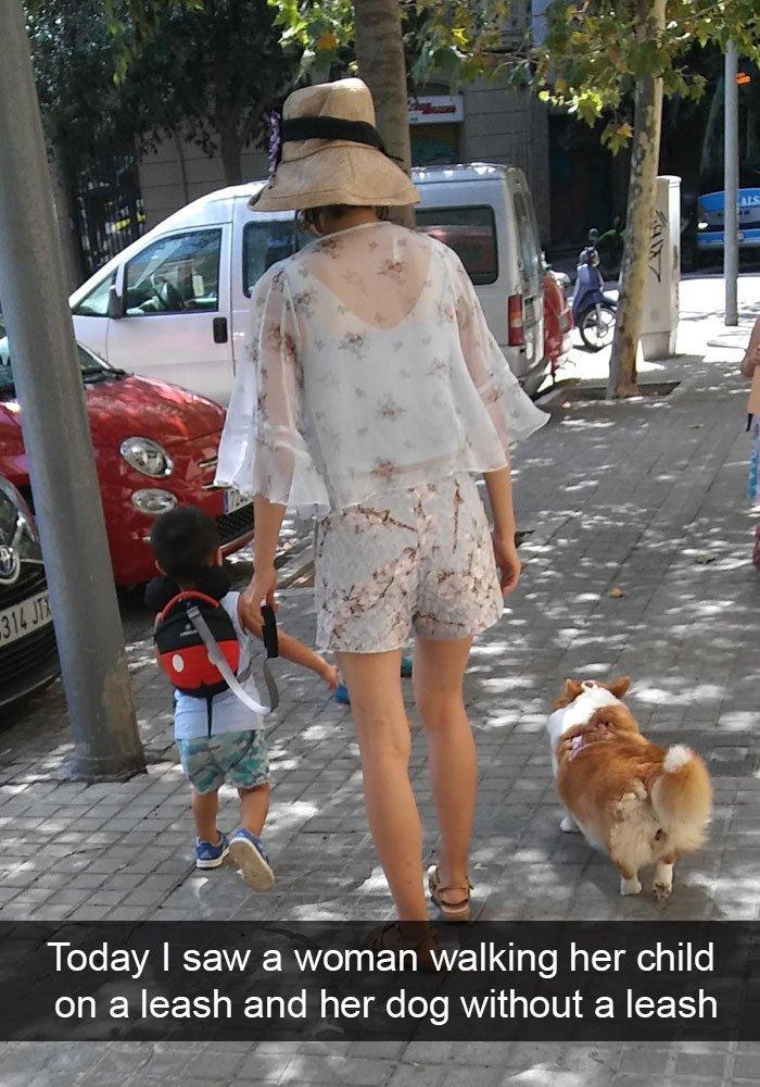 rozmaznane psy (10)