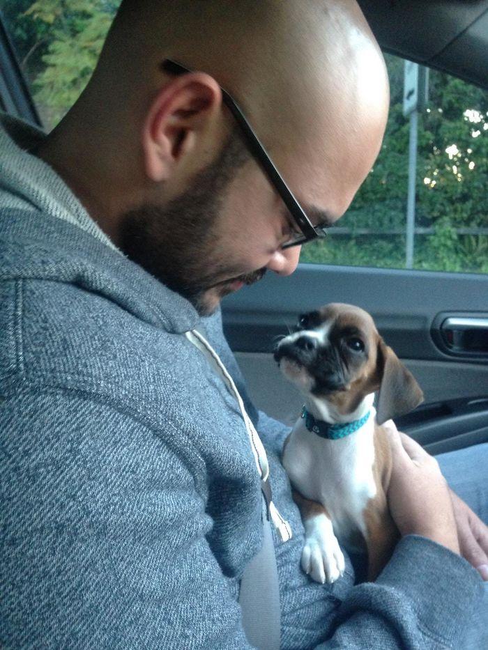 prvé stretnutie so psom