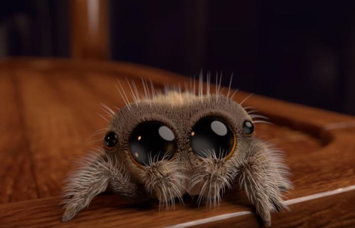 arachnofóbia