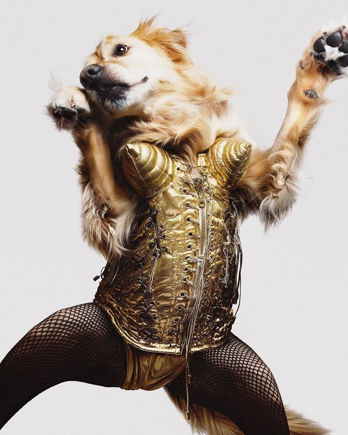 slávne fotky Madonny
