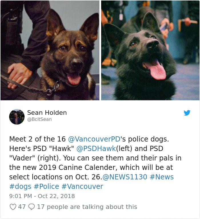 policajné psy