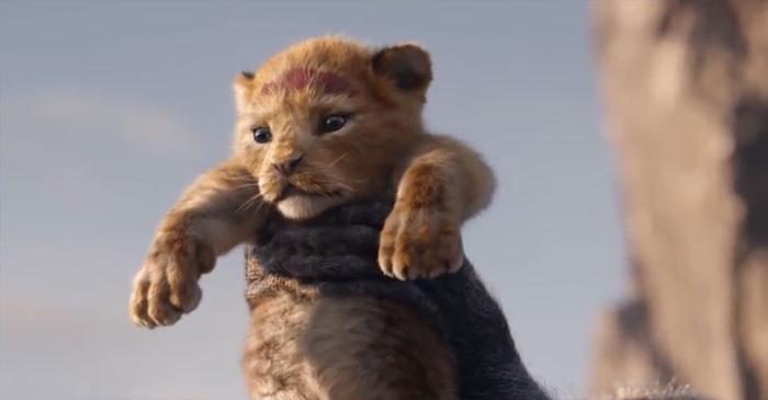 Leví kráľ 2019