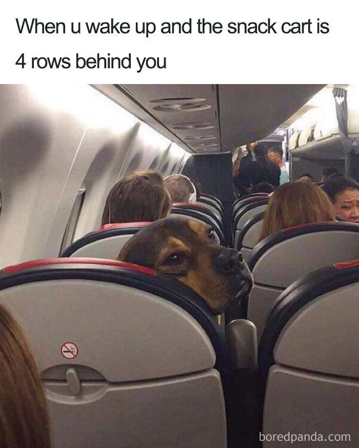 meme o cestovaní