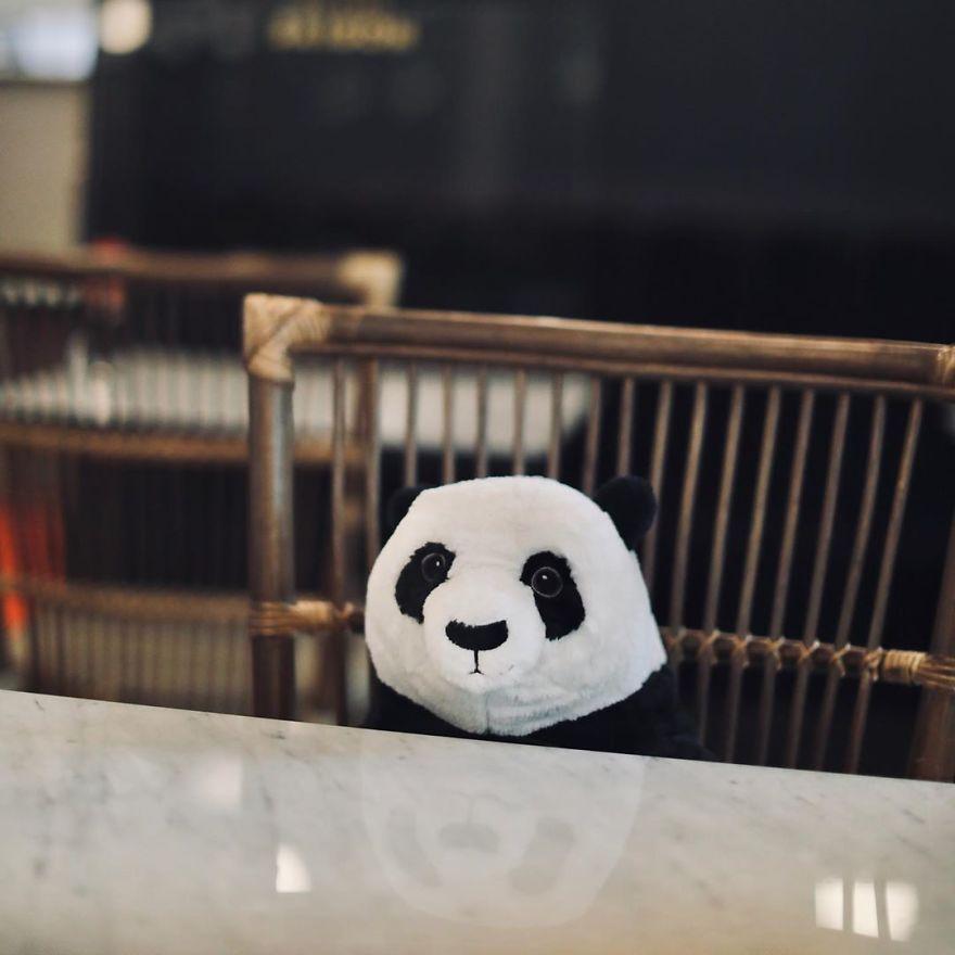 plyšové pandy