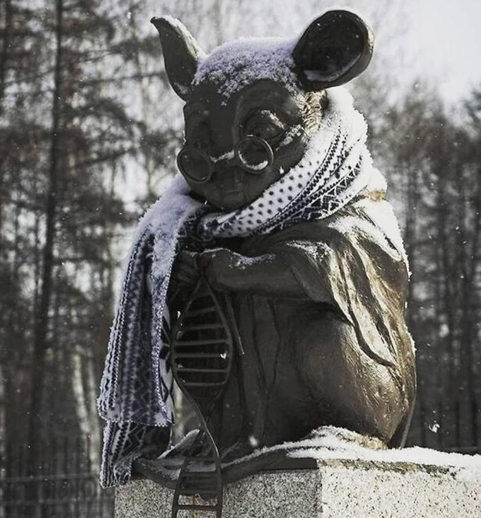 zima v Rusku