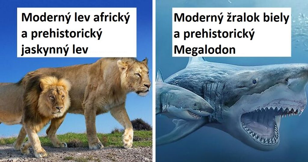 38 porovnaní terajších zvierat s ich prehistorickými predchodcami